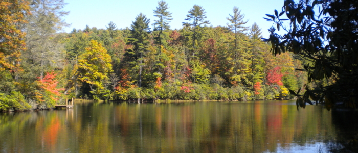 Community Lake in Western North Carolina
